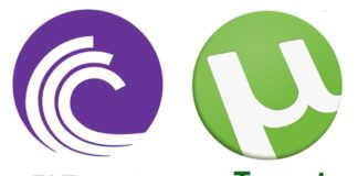 How Does Torrent Work