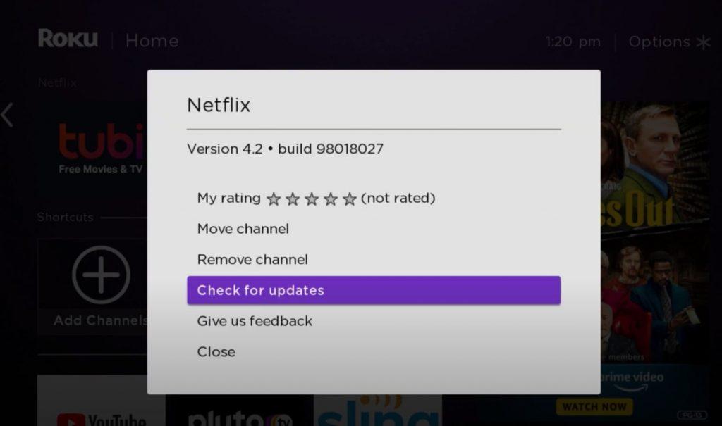 Netflix not working on Roku - Netflix Update