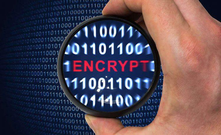 Data Encryption Techniques